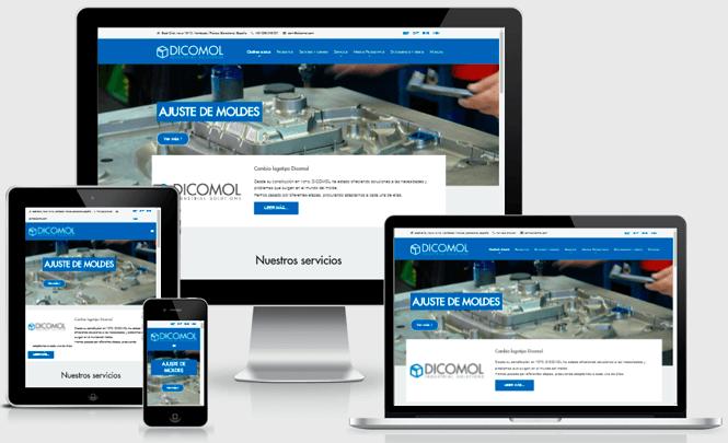 Presentación web Dicomol 2016